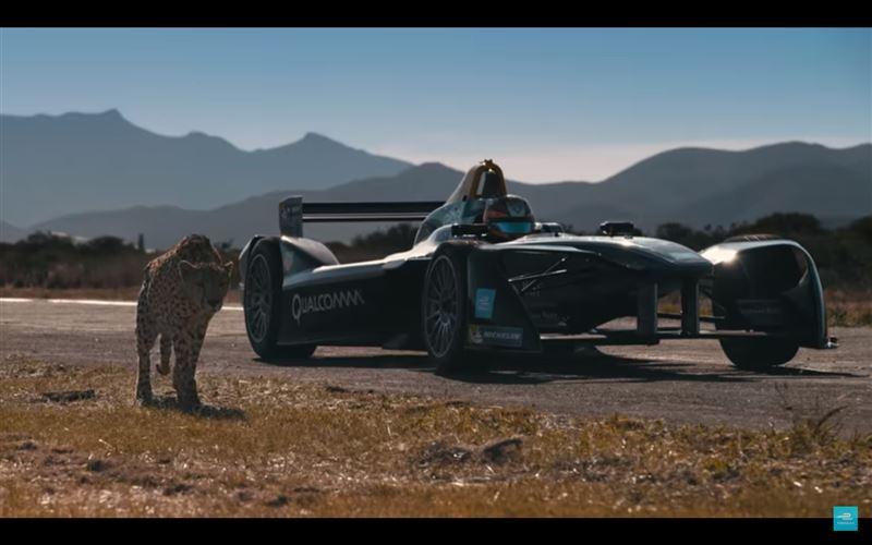 ВИДЕО: Гепард против электромобиля «Формулы Е»