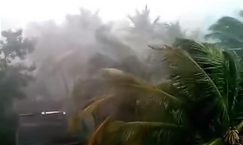 20 человек погибли в результате тропического циклона