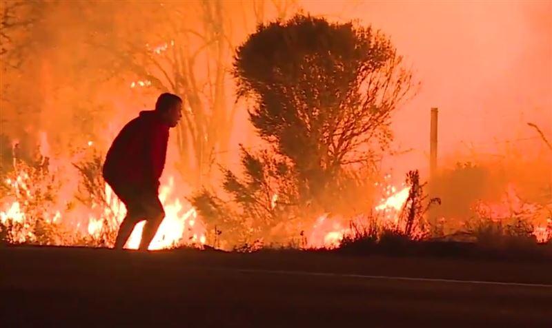 ВИДЕО: В Калифорнии парень не испугался открытого огня и спас кролика от пожара