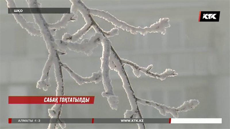 Шығыс Қазақстан облысын сарышұнақ аяз қыспаққа алды