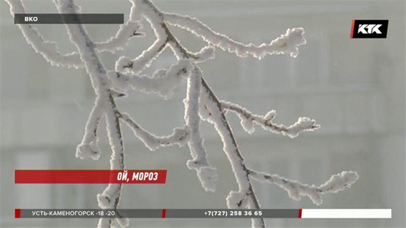 В Семее и Усть-Каменогорске отменили занятия в школах