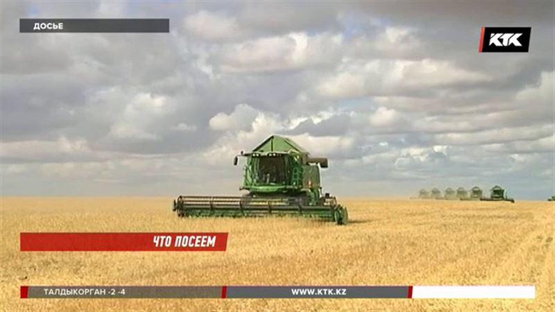 Подготовка к посевной в Казахстане идет с большим опозданием