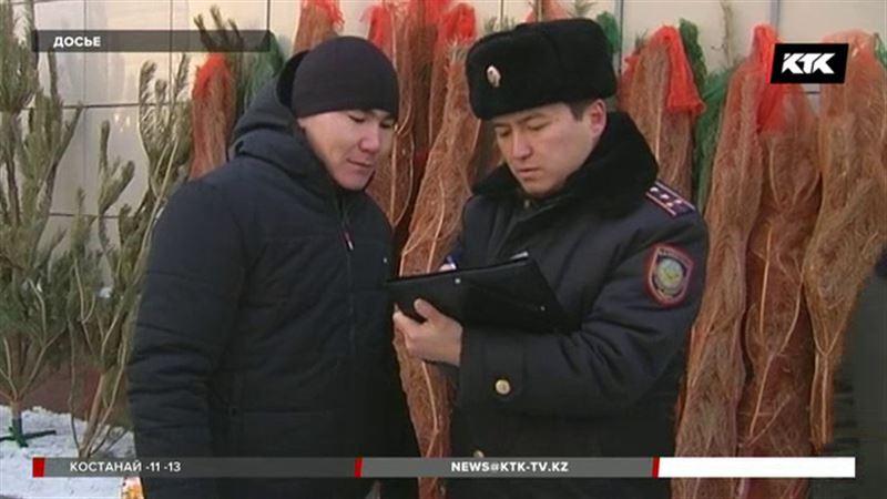 Полицейские изъяли сотни незаконно срубленных елей