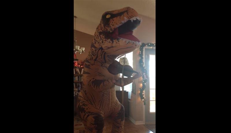 Мужчина в костюме динозавра сыграл на скрипке для своей супруги в Рождество