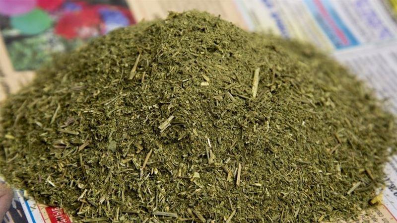 У казахстанца изъяли 59 килограмм марихуаны