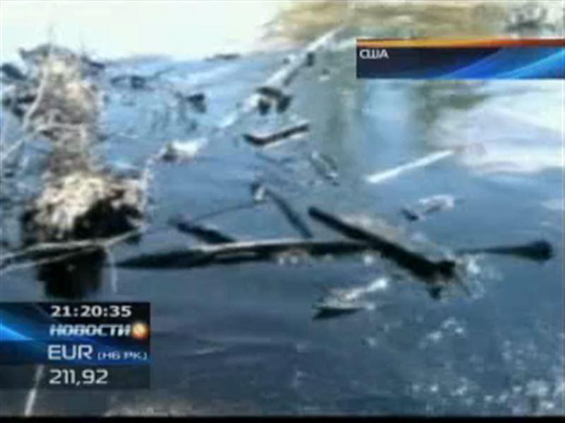 США: около 160 тонн нефти попало в реку Йеллоустоун