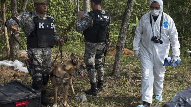 В Мексике нашли более 100 тайных захоронений с сотнями трупов