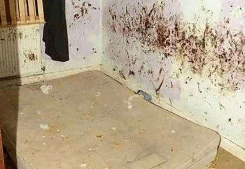 ФОТО: Ата-анасы 2 жасар ұлын адам тұрғысыз бөлмеде бағып келген