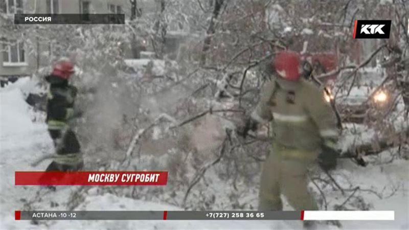 Толщина снега в Москве уже почти полметра