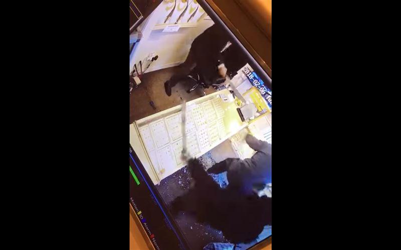 ВИДЕО: Пожилой владелец магазина отбивался от вооруженных грабителей мачете