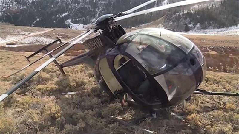 Фото с места крушения: Лось сбил охотившийся за ним вертолет