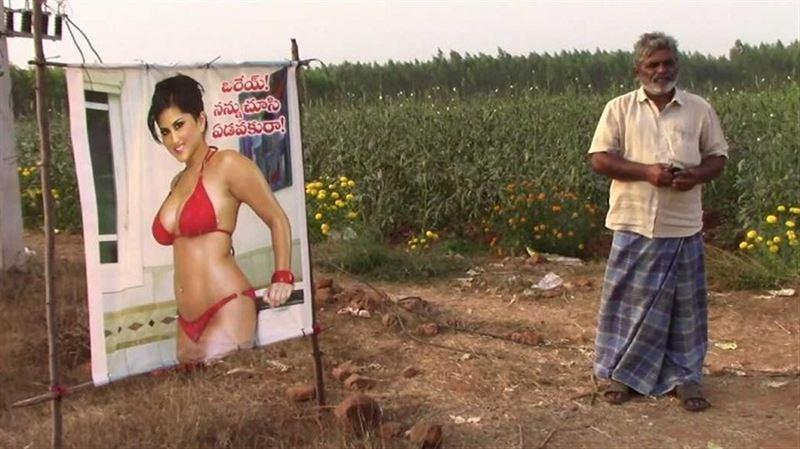 Порноактриса помогла индийцу вырастить рекордный урожай капусты