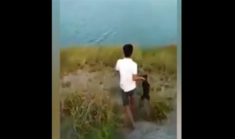 ШОК: В Индонезии подросток бросил щенка в озеро, кишащее крокодилами