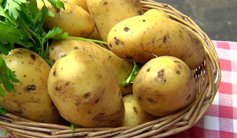 Вред от перекупщиков объяснили на картошке