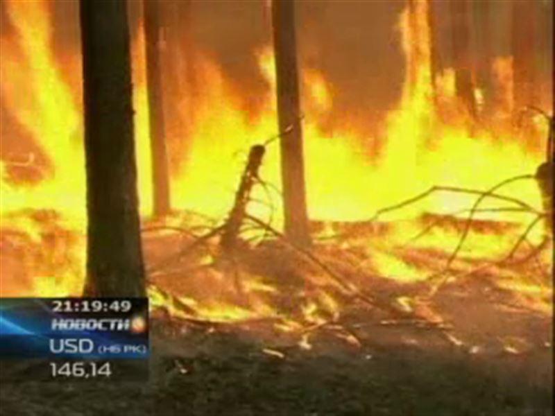 В России бушует более трехсот лесных пожаров