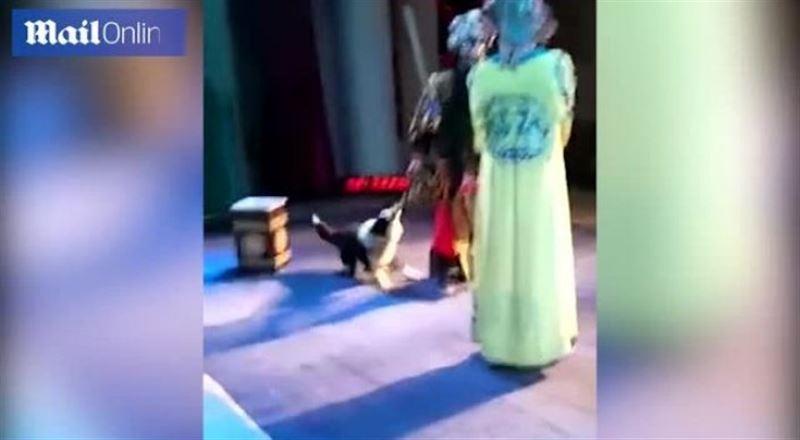 ВИДЕО: Театр сахнасына шығып кеткен ит актерге тап берді