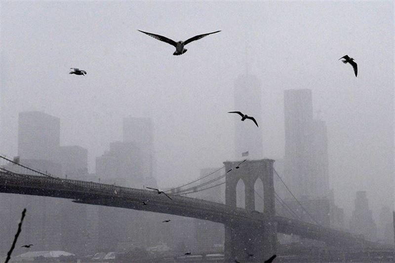 В США из-за снегопадов отменили больше 3000 авиарейсов