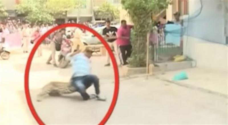 ВИДЕО: Леопард адамдарға шабуыл жасаған