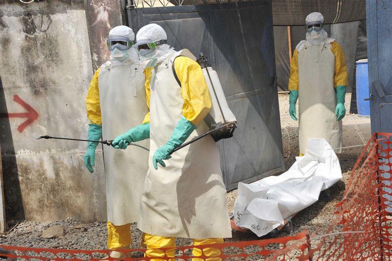 Эболадан да қауіпті вирус түрі пайда болды