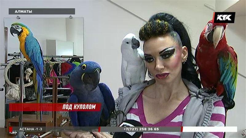 Российский цирк привез в Алматы специальную программу