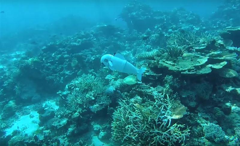 Ученые изобрели робота-рыбу, который поможет исследовать морские глубины