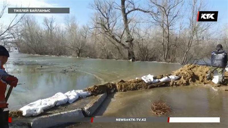 ФОТО: Әкімнің орынбасары тасқында суға кете жаздады