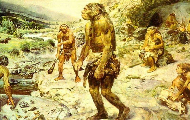 Ученые сделали неожиданное открытие о предке человека