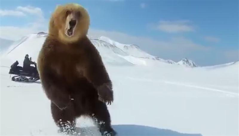 В Сети появилось видео, в котором медведя преследуют мужчины на снегоходах