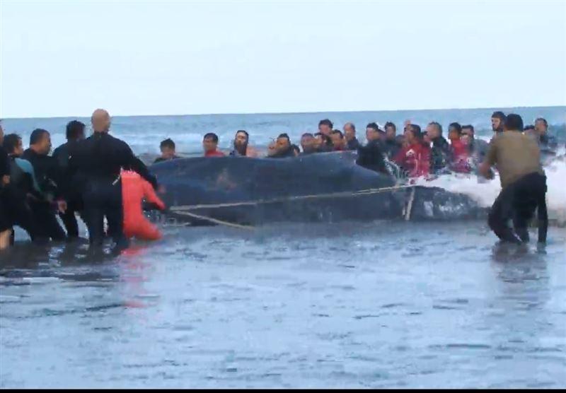 Спасатели вернули в море выбросившегося на берег кита