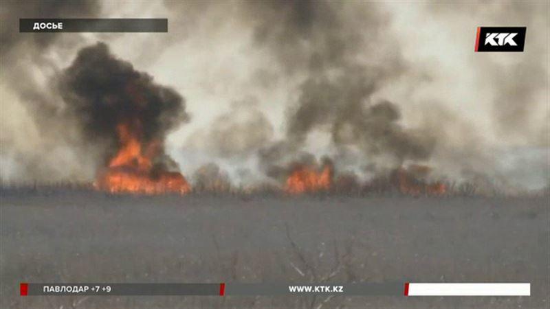 Торфяники в атырауском заповеднике потушили