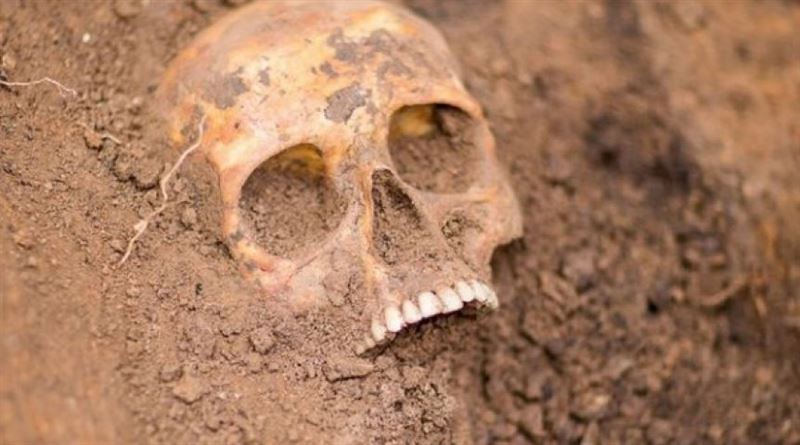 Археологи обнаружили скелет мужчины с ножом вместо руки