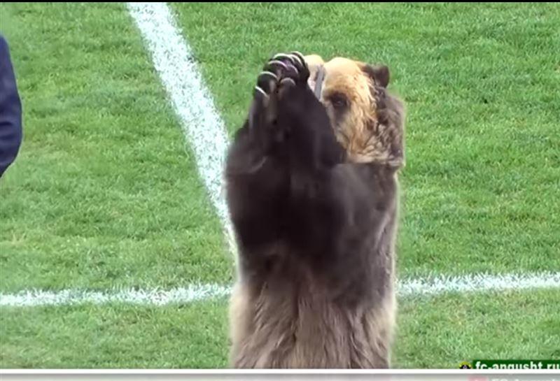 Цирковой медведь открыл российский чемпионат по футболу