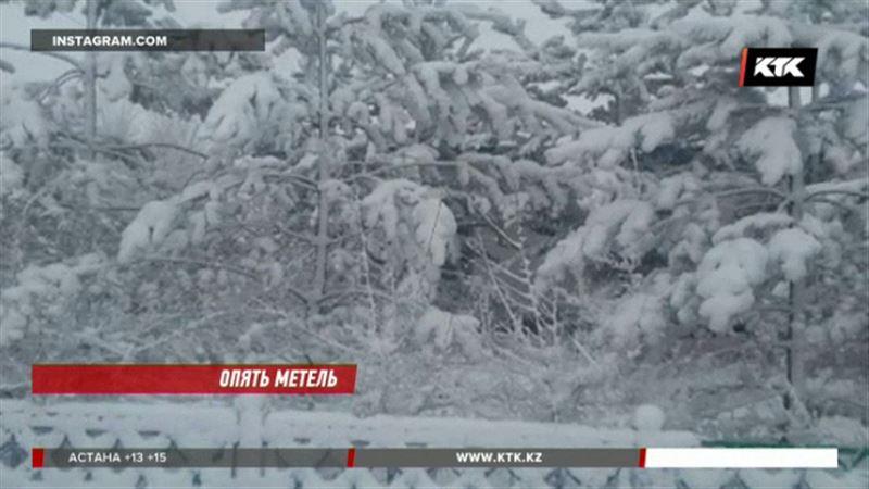 Казахстанцев повеселил апрельский снегопад