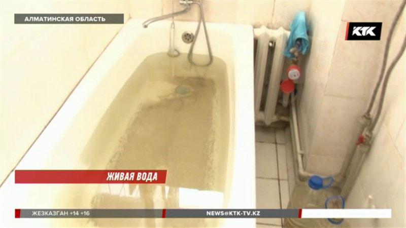 С червями и личинками течет вода в дома сельчан Алматинской области