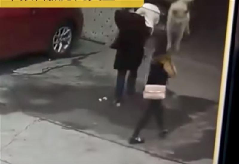 Женщина потеряла сознание после того, как на нее упала собака
