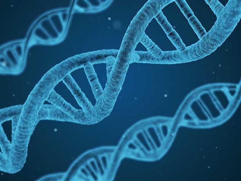 Ученые рассказали, когда люди смогут победить рак и старение