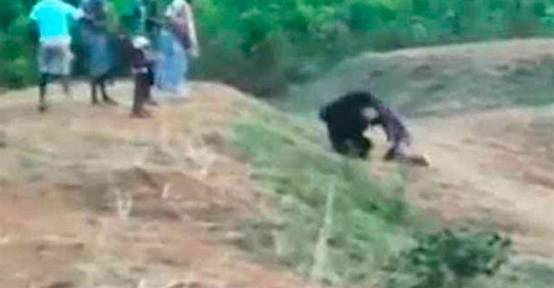 ШОК (18+): Раненый медведь растерзал таксиста, который хотел сделать с ним селфи