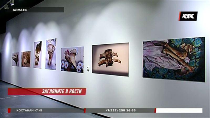 Кости, оливки и самолеты как предметы искусства – выставка в Алматы