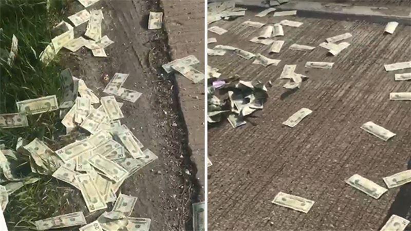 В США из машины на дорогу высыпались 600 тысяч долларов