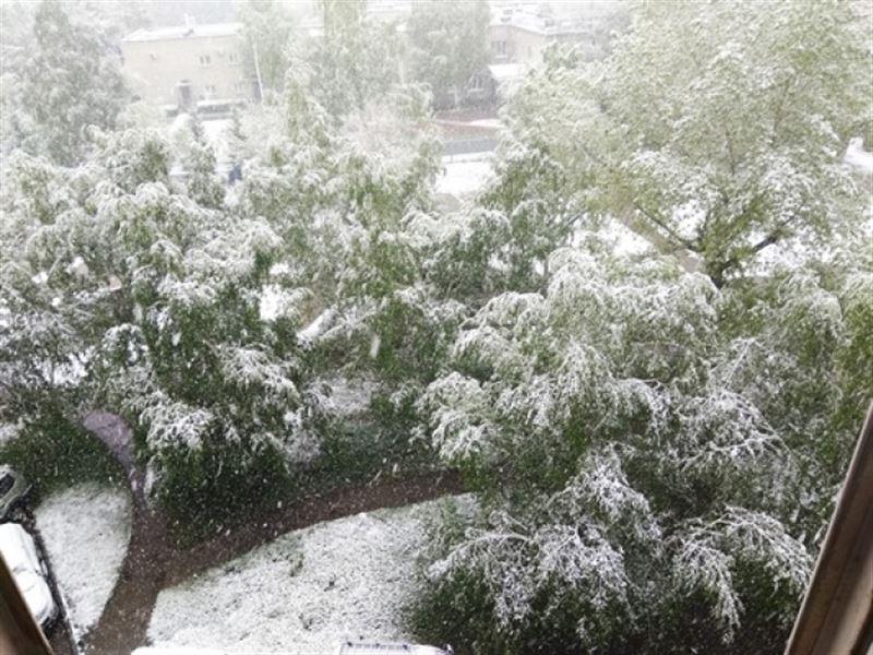 В Усть-Каменогорске с утра выпал снег