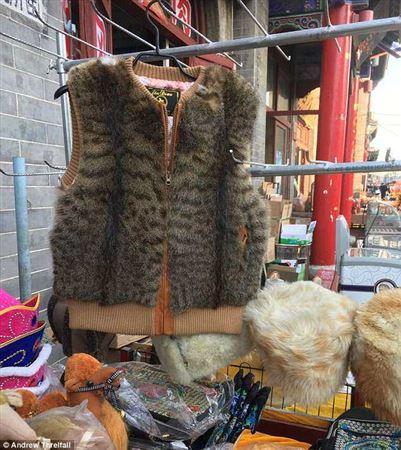 ФОТО: Қытай саудагерлері мысық пен иттің терісінен желеткелер жасайды