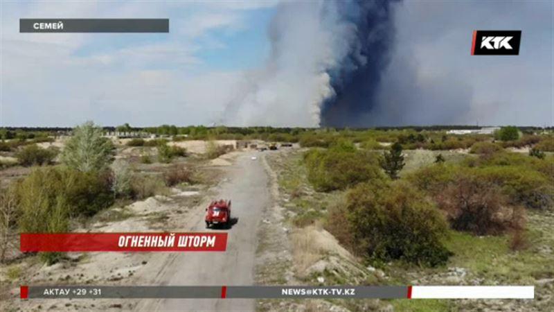 Десятки гектаров реликтового бора горят близ Семея