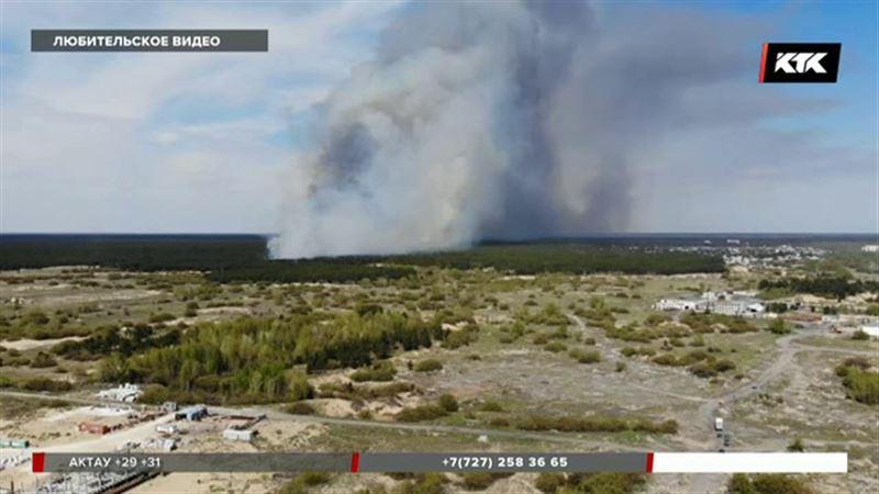 Поджог мог стать причиной масштабного пожара в «Семей орманы»