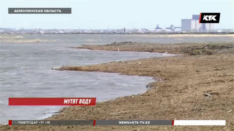 «Мы ляжем под бульдозер»: акмолинские сельчане отчаянно борются за озеро