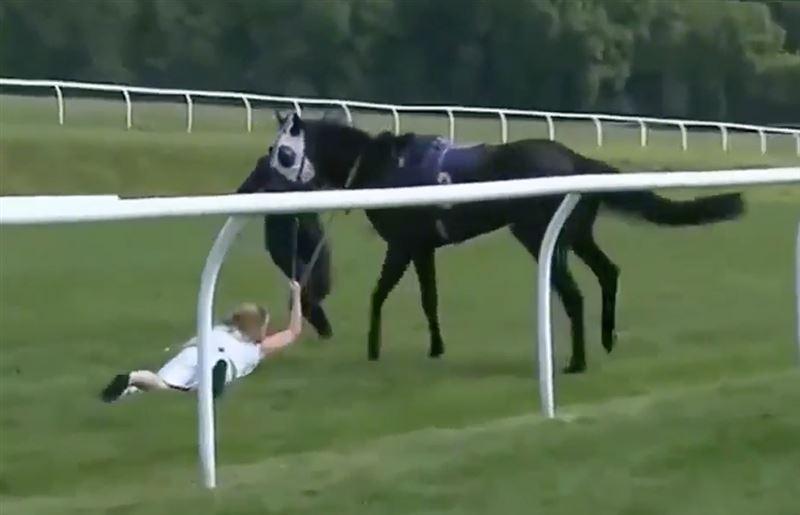 Журналистка остановила коня на скаку в прямом эфире