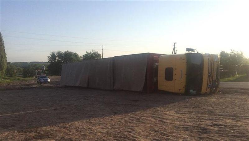 Из перевернувшегося грузовика вывалились 200 свиней