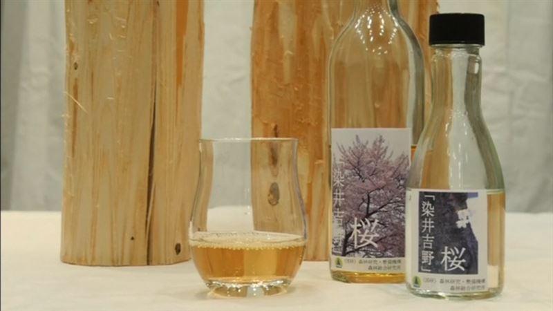 ВИДЕО: Жапондықтар ағаштан алкоголь жасап үйренді