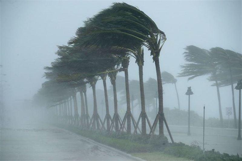 В США два человека погибли из-за шторма «Альберто»