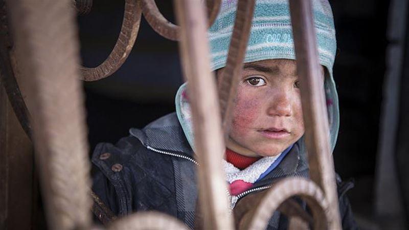 Жеті жасар қазақ қызы Сириядағы соғыс аймағында жүр