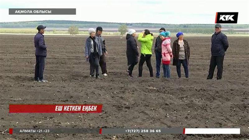 Ақмола облысында ағаш отырғызған жұмысшылар жалақыларын талап етті